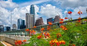 papular city Austin