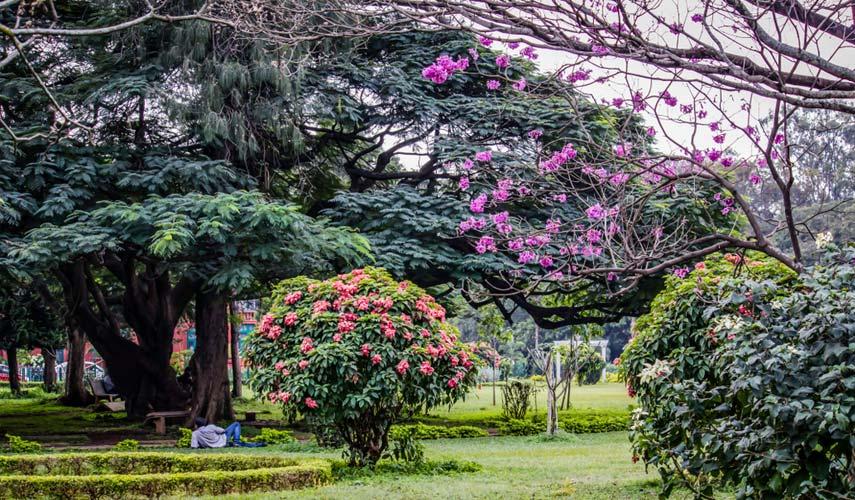 Bangalore garden pic on shadi®